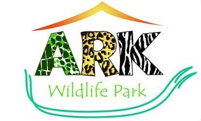 Junior Keeper for the Day at Ark Wildlife Park 1
