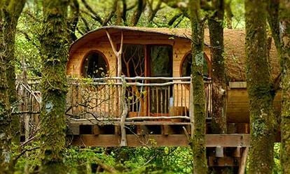 Two Night Tree House Escape for Two 1
