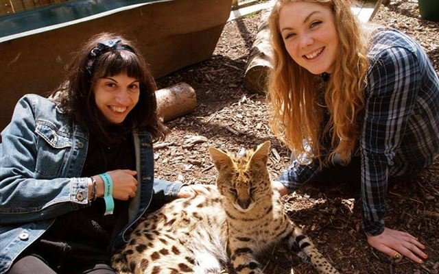 Half Day Animal Keeper Experience at Hoo Farm for Two 1