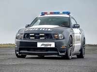 Mustang Police Car Driving Experiences