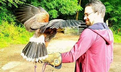Falconry and Birds of Prey 1