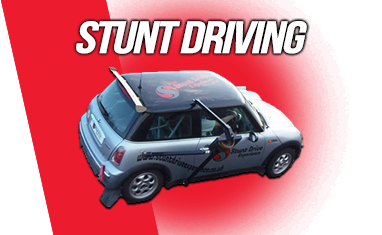 Stunt Driver Training