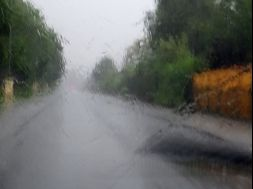 Dazzling sun and seasonal downpours can present seasonal driving challenges